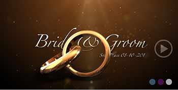 Weddings Rings Intro