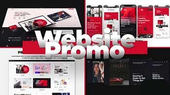 Flex Website Promo-29645808
