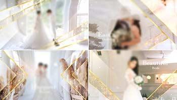 Elegant Particle Wedding Slideshow-31687220