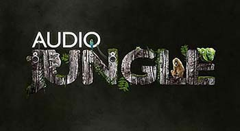 Audiojungle Bundle Vol 7