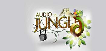 AudioJungle Pack 10