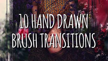 Hand Drawn Brush Transitions