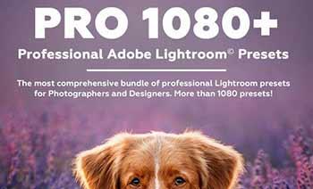 PRO 1080 Professional
