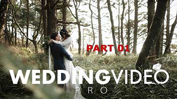 WEDDING VIDEO PRO part01